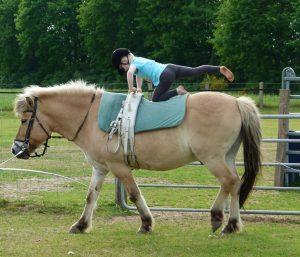 Feste Feiern Pferd